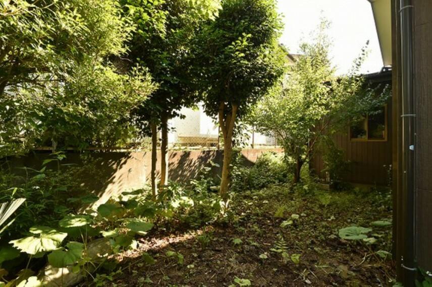 庭 広々したお庭で、開放感があります。