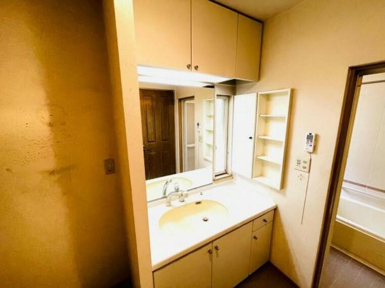 洗面化粧台 シャンプーに便利なシャワー付き洗面化粧台