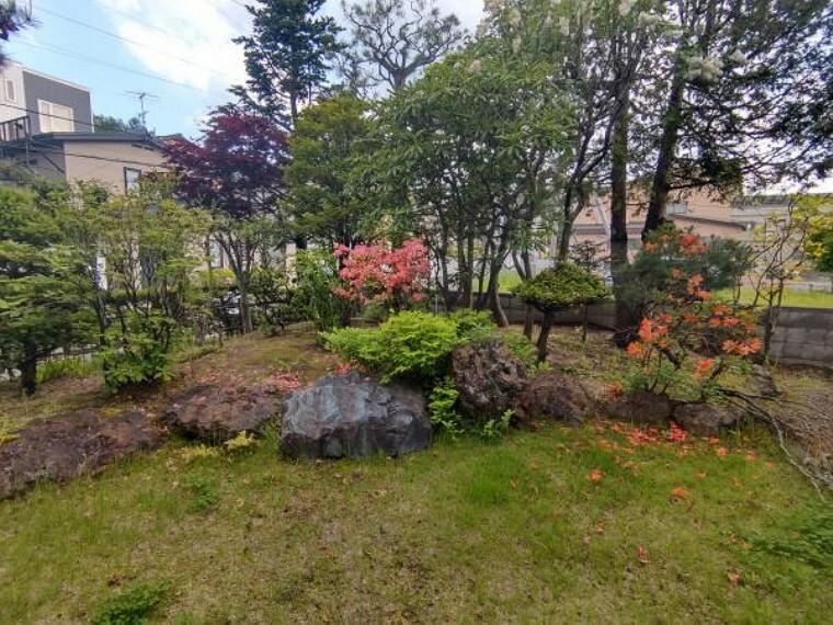 庭 [リフォーム前_庭]リビングの大きい窓からも見渡せる庭になります。木の剪定と越境物の解消をお粉います。