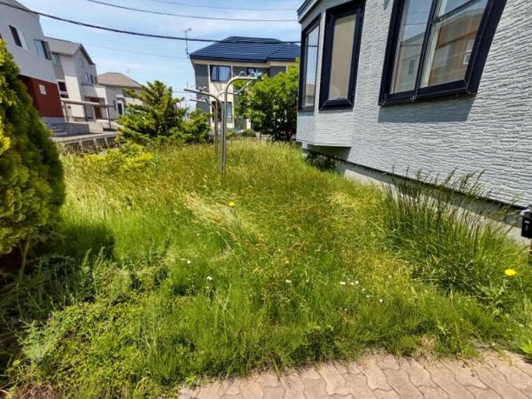 庭 【リフォーム前庭】除草、木撤去を行います。