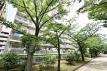 錦糸町ガーデニア