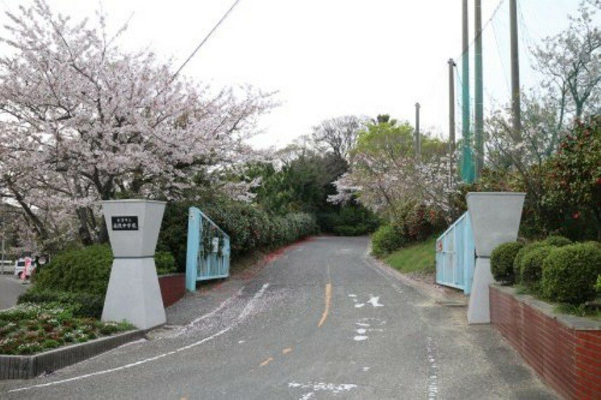 中学校 【中学校】南陵中学校まで3056m
