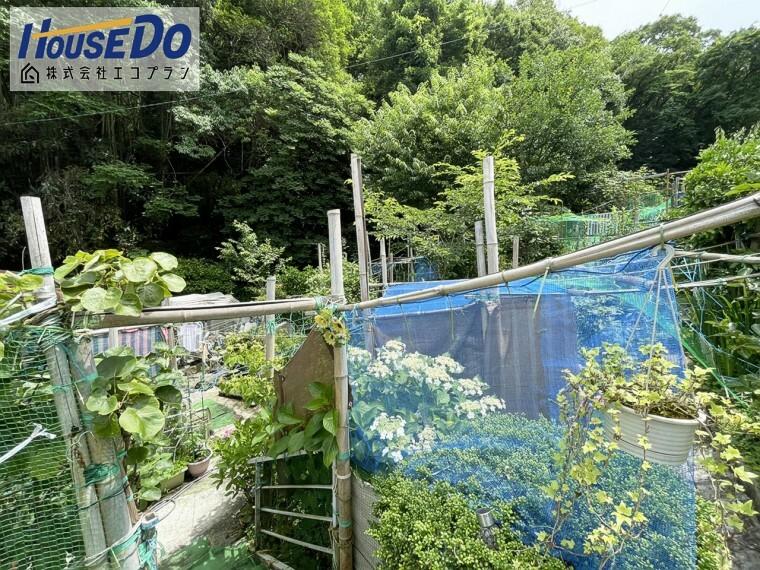 庭 広々としたお庭があり、 本格的な家庭菜園やガーデニングもできます  取れたての野菜や果物が食べられますね!