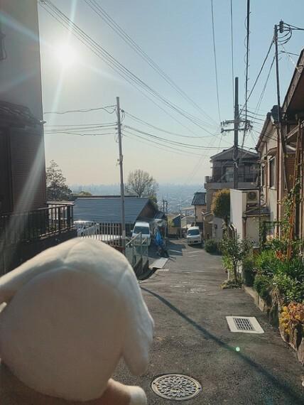 現況写真 大阪平野一望だわん!