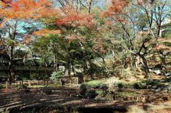 公園 【公園】新宿区立下落合野鳥の森公園まで627m