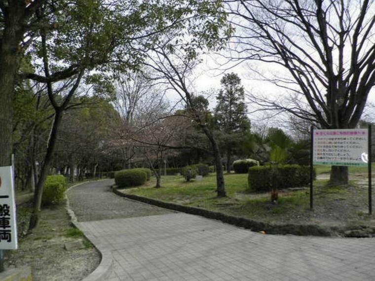 公園 さくら近隣公園