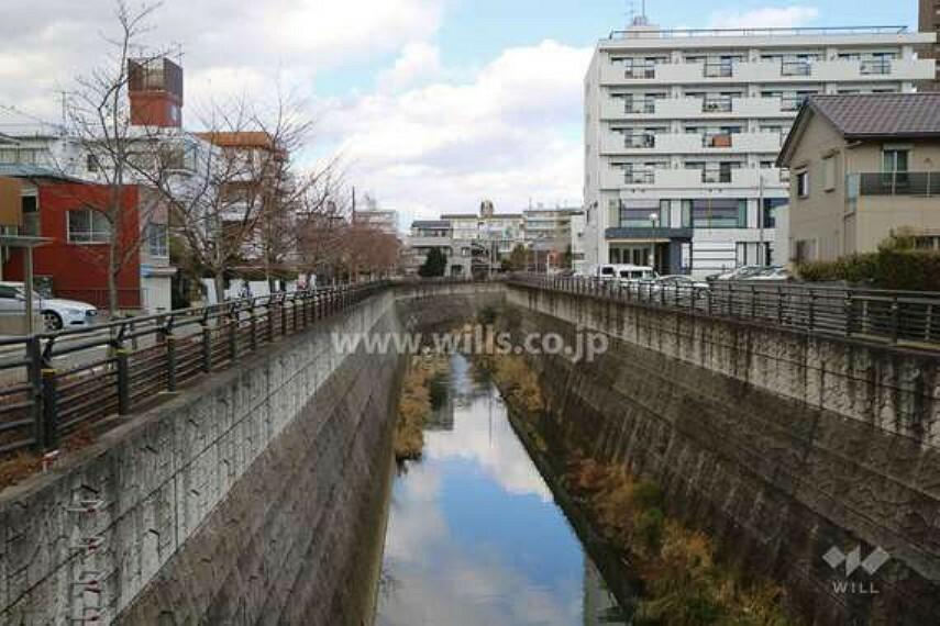 山崎川は千種区の『平和公園』にある猫ヶ洞池を水源とし、昭和区や瑞穂区、南区を流れて名古屋港に注ぐ全長13.6kmの二級河川。財団法人「日本さくらの会」から「さくらの名所100選」に認定されています。