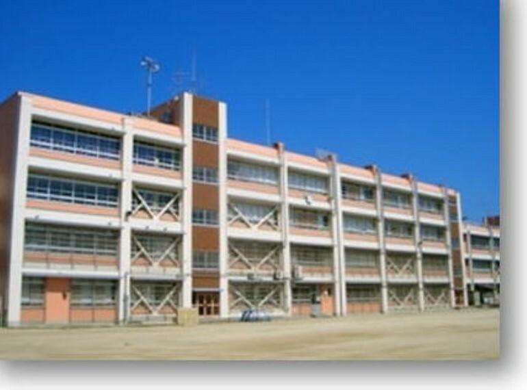 小学校 【小学校】高石市立羽衣小学校まで506m