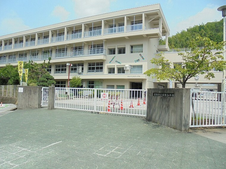 小学校 【小学校】泉野小学校まで1764m