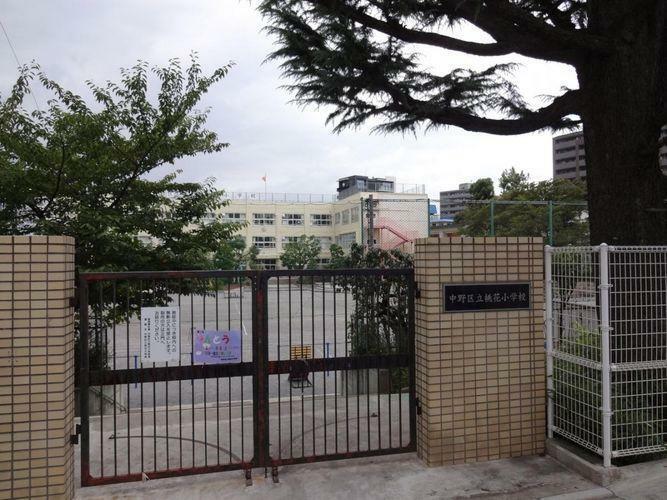 小学校 中野区立桃花小学校 徒歩10分。