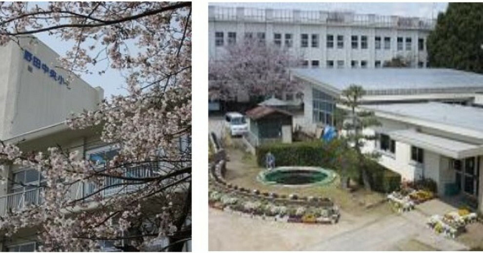 小学校 【小学校】野田市立中央小学校まで502m