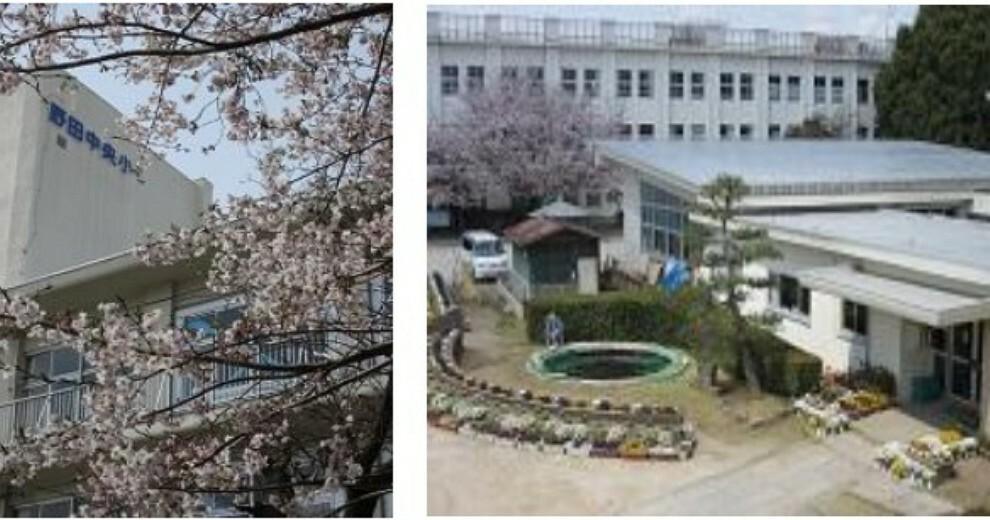 小学校 【小学校】野田市立中央小学校まで494m