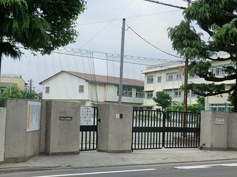 小学校 川崎市立古川小学校 約480m