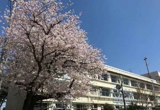小学校 千葉市立仁戸名小学校 徒歩8分。