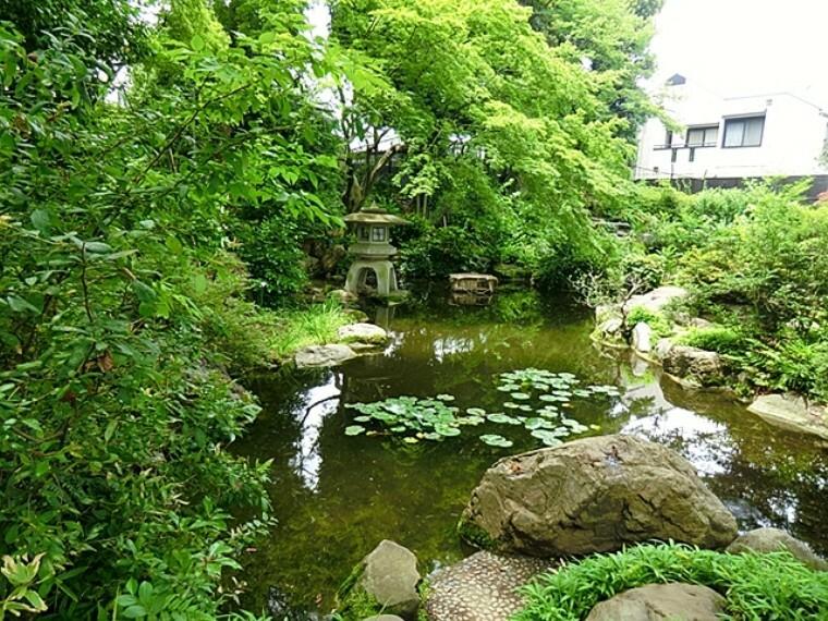 公園 天沼弁天池公園