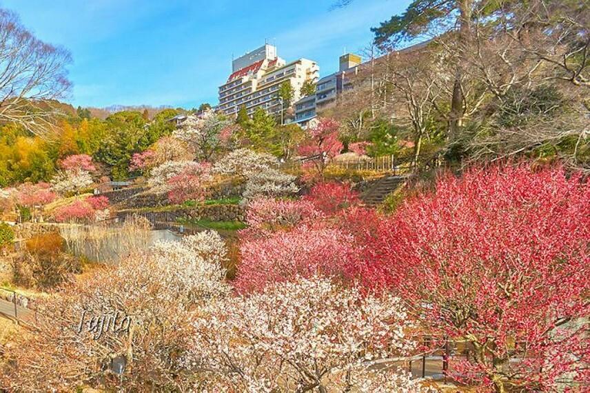 公園 【公園】熱海梅園まで9080m