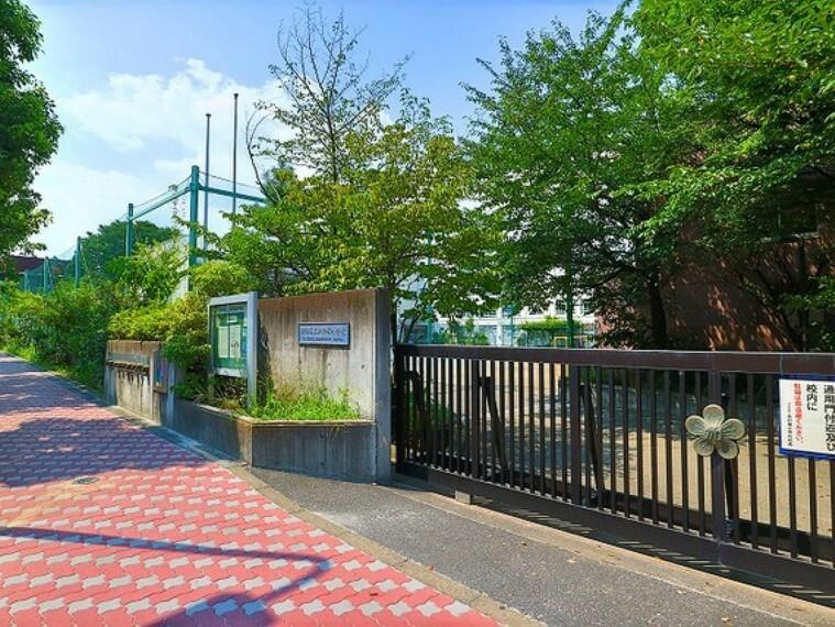 小学校 渋谷区立加計塚小学校 約650m