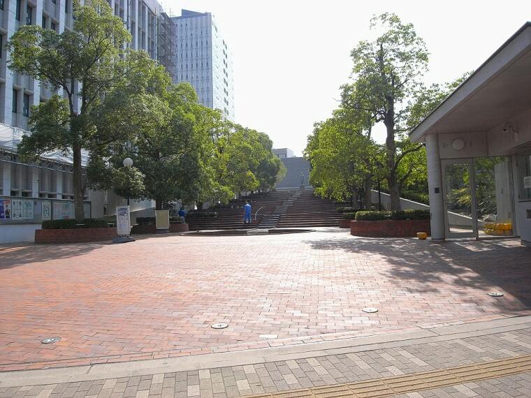 【大学】東洋大学通信教育部まで1356m