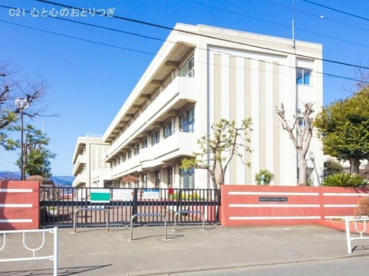 小学校 相模原市立新宿小学校