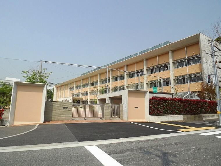 小学校 【小学校】芦屋市立精道小学校まで547m