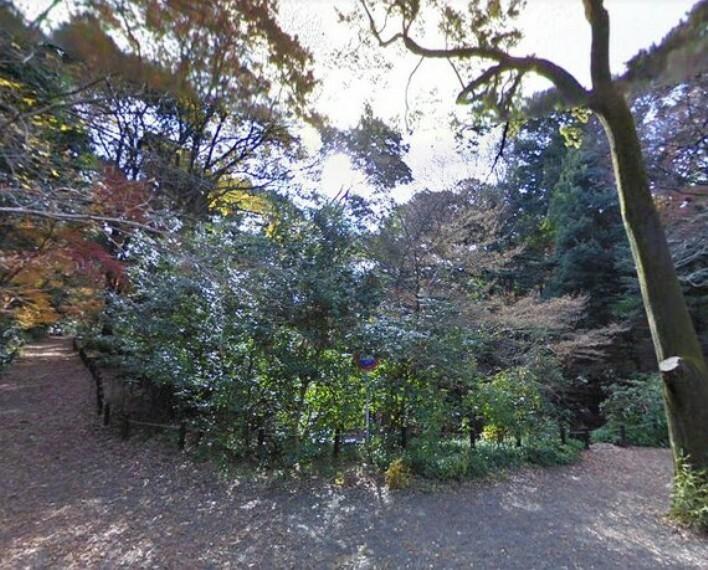 公園 国立科学博物館附属自然教育園