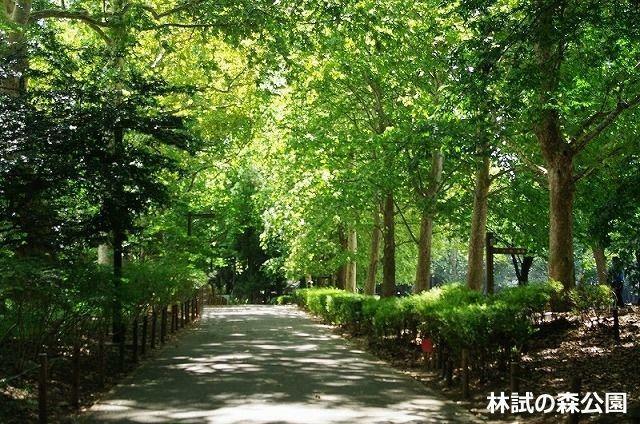 公園 林試の森公園 徒歩9分。