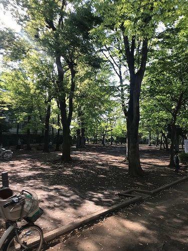 公園 中央緑地公園 徒歩21分。