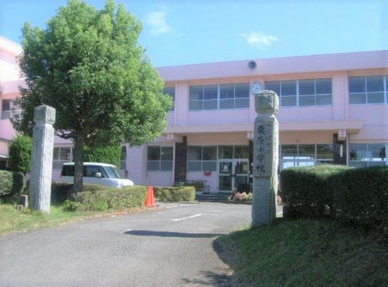 小学校 【小学校】つくば市立栗原小学校まで2042m