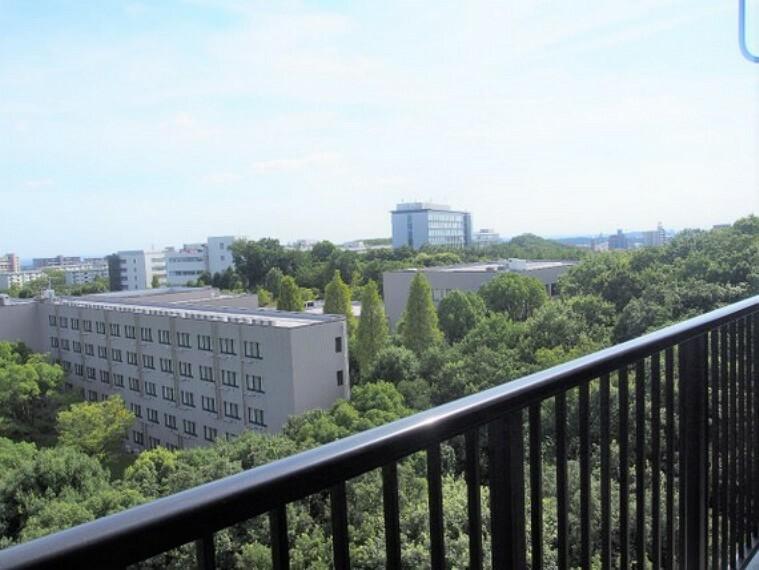 眺望 9階バルコニー部分からの眺望。前面に高い建物が無いので、視界が開けています。
