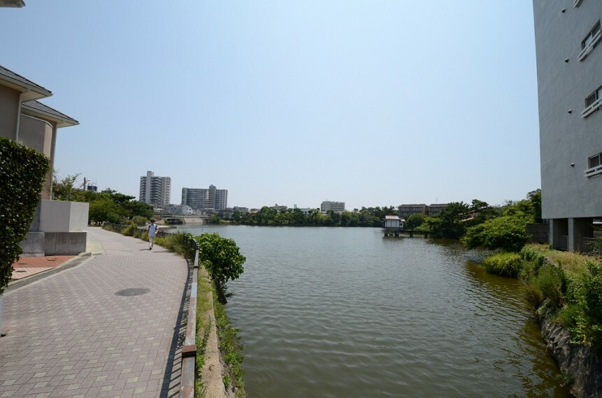 公園 【公園】弁天池公園まで1177m