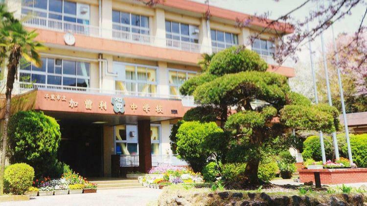 中学校 千葉市立/加曽利中学校 徒歩10分。