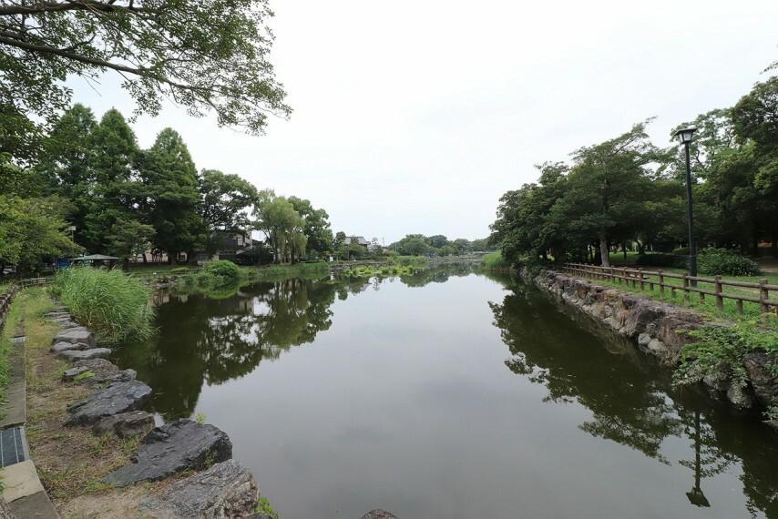 公園 浅井山公園