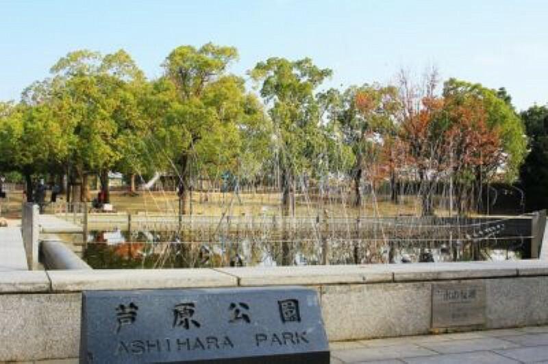 公園 【公園】芦原公園まで1122m
