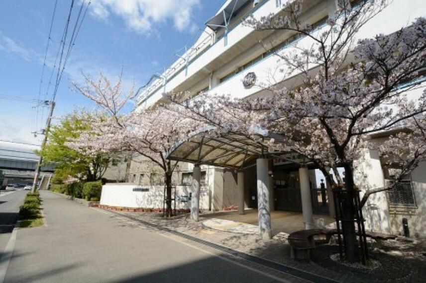 中学校 【中学校】神戸市立魚崎中学校まで1672m