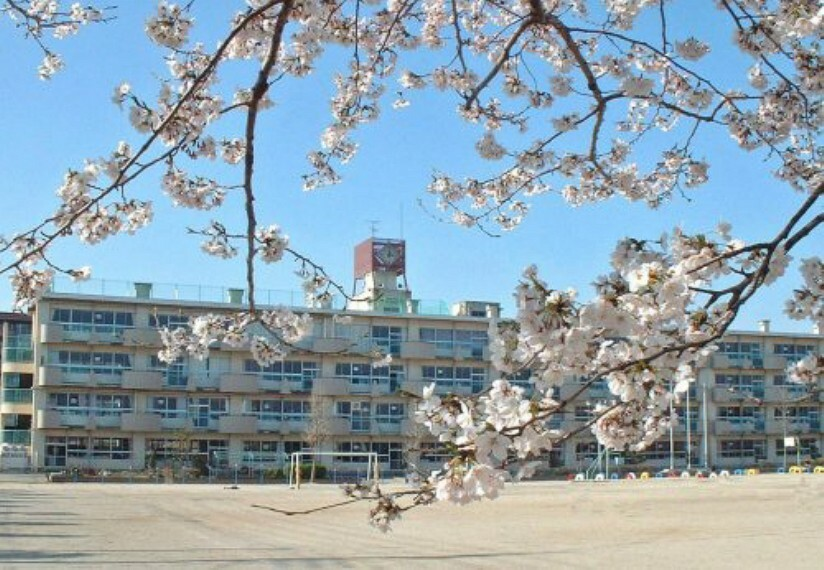 小学校 【小学校】越谷市立千間台小学校まで1100m