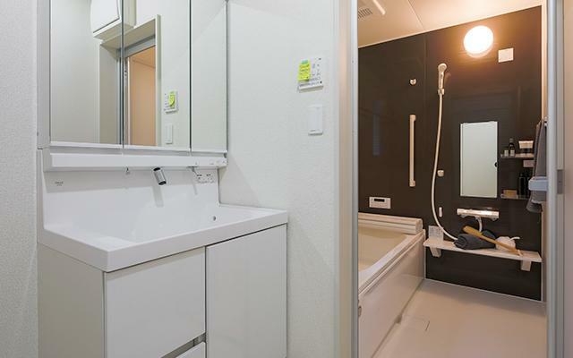 同仕様写真(内観) 洗面化粧台(1階)