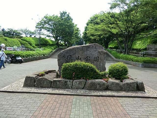 公園 【横山公園】公園の県道沿いには桜(ソメイヨシノ)が数多く植栽されており、季節になりますとお花見が楽しめます。駐車場もあります。
