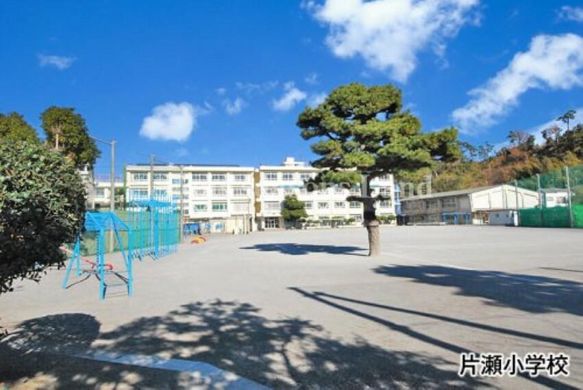 小学校 【小学校】片瀬小学校まで508m