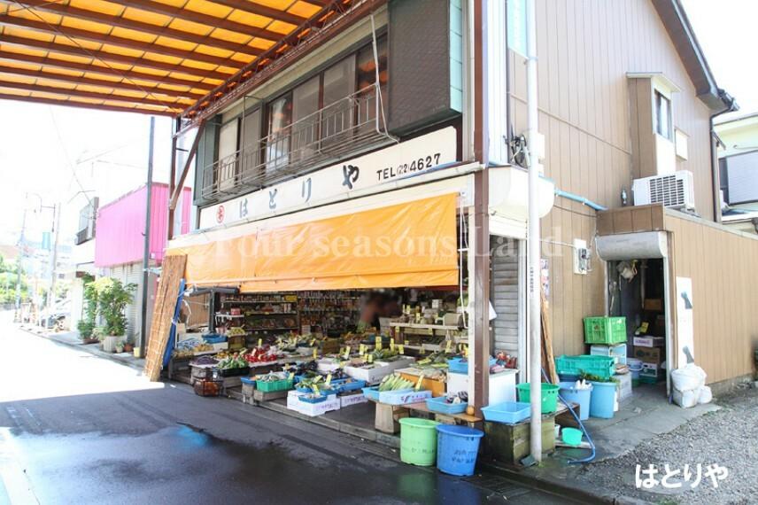 スーパー 【スーパー】はとりや食料品店まで945m