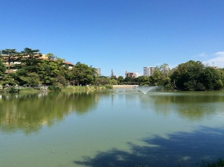 公園 万代池公園
