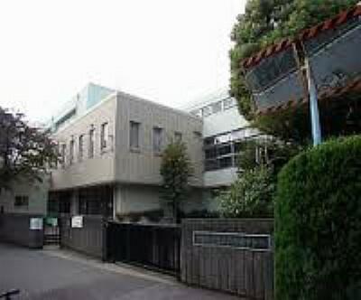 中学校 【中学校】杉並区立和泉中学校まで528m