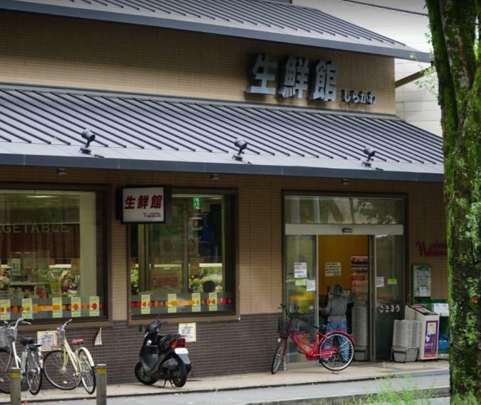 スーパー 生鮮館なかむら白川店