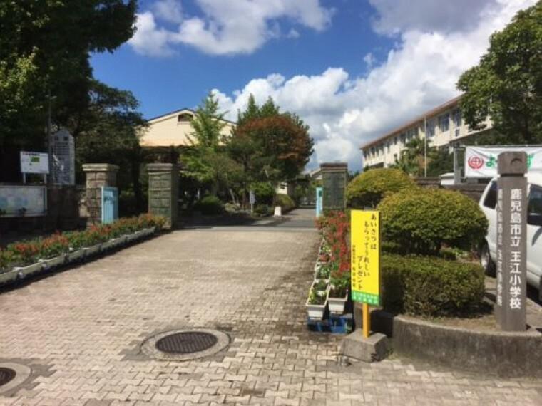小学校 【小学校】玉江小学校まで876m