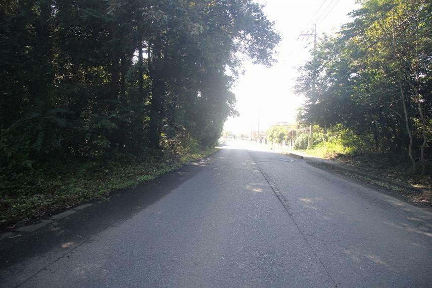 現況写真 西側道路を北側より南方向へ(2021年9月撮影)