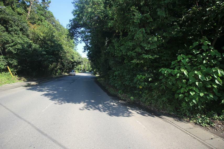 現況写真 西側道路を南側より北方向へ(2021年9月撮影)