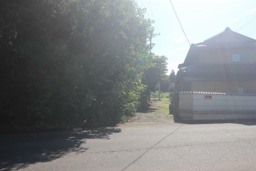 現況写真 南側隣地境界(2021年9月撮影)