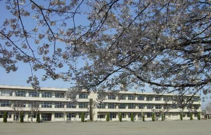 小学校 栃木市立大平中央小学校