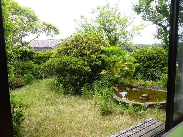 眺望 窓からは蛙が池から顔を出した、趣を感じる庭園風景を一望