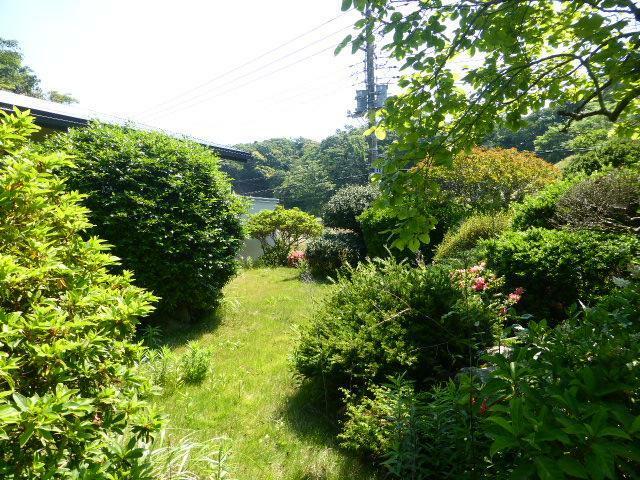 庭 四季折々の庭の様子を楽しめそうです