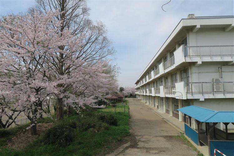 中学校 君津市立八重原中学校 徒歩30分。